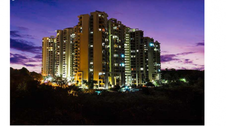 1843 sqft, 3 bhk Apartment in Purva Highland Anjanapura, Bangalore at Rs. 85.0000 Lacs