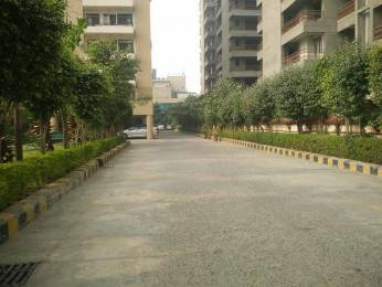 2450 sqft, 3 bhk BuilderFloor in Reputed Abhinandan Sector 51, Gurgaon at Rs. 31000
