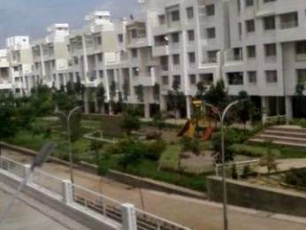 560 sqft, 1 bhk Apartment in Magnus Simpli City Handewadi, Pune at Rs. 30.0000 Lacs