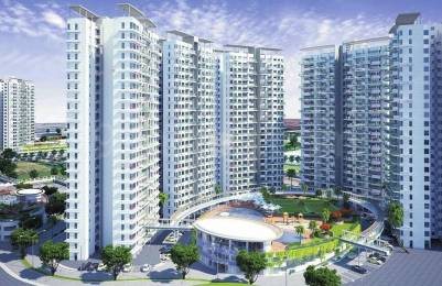 1078 sqft, 2 bhk Apartment in Pharande Puneville Tathawade, Pune at Rs. 76.0000 Lacs