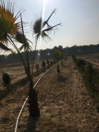 900 sqft, Plot in Builder Project Sector 54 Bhiwadi, Bhiwadi at Rs. 17.5000 Lacs