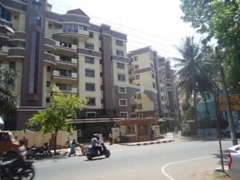 2000 sqft, 3 bhk Apartment in Sobha Opal Jayanagar, Bangalore at Rs. 45000