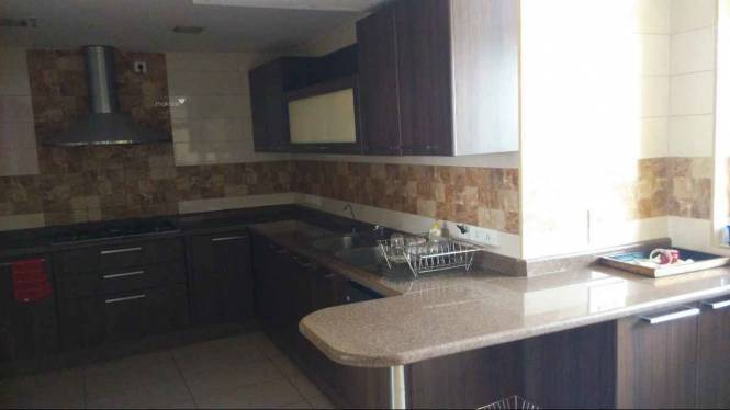 5204 sqft, 5 bhk Apartment in Unitech World Spa Sector 41, Gurgaon at Rs. 1.1800 Lacs