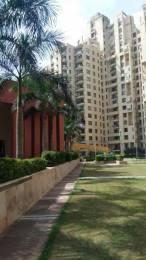 1629 sqft, 3 bhk Apartment in Unitech Fresco Sector 50, Gurgaon at Rs. 32000