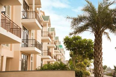 1800 sqft, 3 bhk Apartment in Omaxe Silver Birch Mullanpur, Mohali at Rs. 43.0000 Lacs