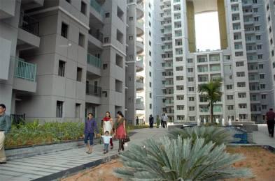1640 sqft, 3 bhk Apartment in Builder Brigade Gateway Orion Mall WTC Malleswaram, Bangalore at Rs. 75000