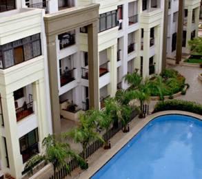 1540 sqft, 3 bhk Apartment in Renaissance Park II Rajaji Nagar, Bangalore at Rs. 1.6000 Cr