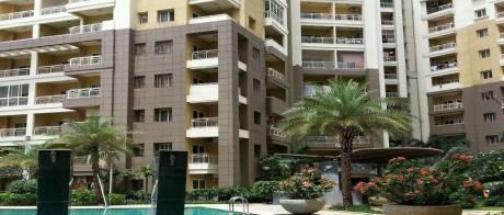 2050 sqft, 3 bhk Apartment in Mantri Mantri Greens Seshadripuram, Bangalore at Rs. 50000