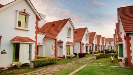3600 sqft, 4 bhk Villa in Sobha Emerald Jakkur, Bangalore at Rs. 90000