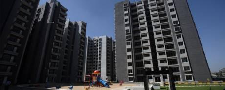 1716 sqft, 3 bhk Apartment in Sobha Chrysanthemum Narayanapura on Hennur Main Road, Bangalore at Rs. 27000