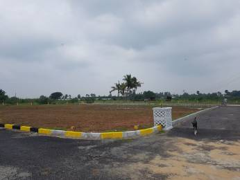 1550 sqft, Plot in Builder Project veppampattu, Chennai at Rs. 8.6025 Lacs