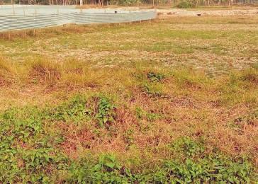 1440 sqft, Plot in Naskar Green Town Joka, Kolkata at Rs. 3.4000 Lacs