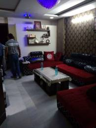 1000 sqft, 3 bhk BuilderFloor in Builder Project Pitampura, Delhi at Rs. 25000