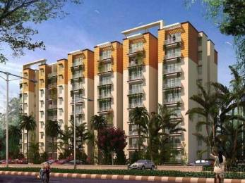 550 sqft, 1 bhk Apartment in Star Realcon Group The Essentia Sector 22 Bhiwadi, Bhiwadi at Rs. 14.0000 Lacs