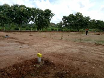 1197 sqft, Plot in Builder bhavani gardens G Konduru, Vijayawada at Rs. 5.0500 Lacs