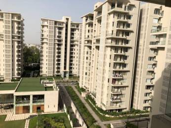 1450 sqft, 2 bhk Apartment in Shalimar Gallant Aliganj, Lucknow at Rs. 98.0000 Lacs