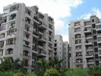 1080 sqft, 3 bhk BuilderFloor in D D B Realty DDB Shubham Designer Homes Sector-8 Dwarka, Delhi at Rs. 91.0000 Lacs