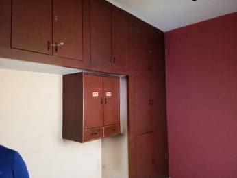 1000 sqft, 3 bhk IndependentHouse in Builder Project JK Road, Bhopal at Rs. 45.0000 Lacs