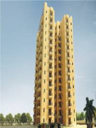 545 sqft, 1 bhk Apartment in Satya The Hermitage Sector 103, Gurgaon at Rs. 37.5000 Lacs