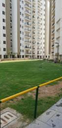 1843 sqft, 3 bhk Apartment in Umang Winter Hills Shanti Park Dwarka, Delhi at Rs. 24000
