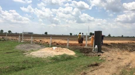 900 sqft, Plot in Builder Project paritala, Vijayawada at Rs. 6.8000 Lacs