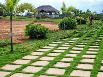 1800 sqft, Plot in Bhoomatha Padmanabha Green Valley Tarluvada, Visakhapatnam at Rs. 25.0000 Lacs