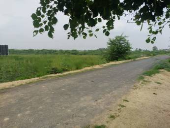 1000 sqft, Plot in Builder Royal residency Faizabad Road, Lucknow at Rs. 5.0000 Lacs