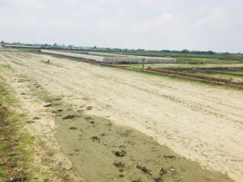 1000 sqft, Plot in Builder Pole Star City Kanpur Allahabad Highway, Kanpur at Rs. 5.0100 Lacs