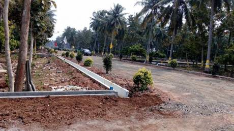1800 sqft, Plot in Builder Project Vempadu, Eluru at Rs. 10.6000 Lacs