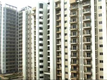 2597 sqft, 4 bhk Apartment in Spaze Privy Sector 72, Gurgaon at Rs. 1.4500 Cr
