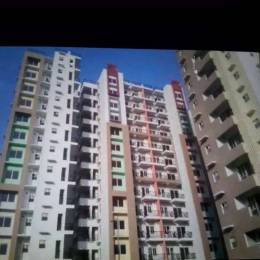 1300 sqft, 3 bhk Apartment in LDA Sopan Enclave Aashiyana, Lucknow at Rs. 68.0000 Lacs