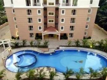 1600 sqft, 3 bhk Apartment in Ashed Regency Magnum Kalyan Nagar, Bangalore at Rs. 35000