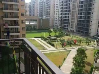1530 sqft, 3 bhk Apartment in Builder Project Brs nagar, Ludhiana at Rs. 30000