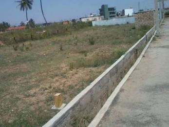 3600 sqft, Plot in Builder chaitanya city Tilhari, Jabalpur at Rs. 54.0000 Lacs