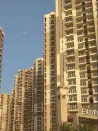 1035 sqft, 2 bhk Apartment in Exotica Dreamville Sector 16C Noida Extension, Greater Noida at Rs. 41.0000 Lacs