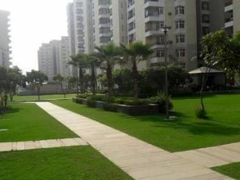 1492 sqft, 3 bhk Apartment in Builder Project Greater Noida, Greater Noida at Rs. 12000