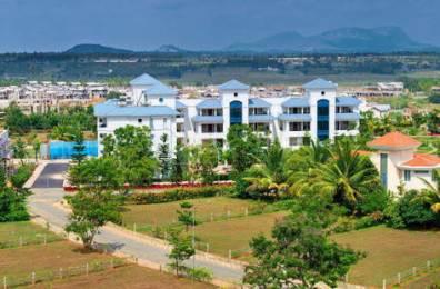 7650 sqft, Plot in Continental Swiss Town Devanahalli, Bangalore at Rs. 3.0600 Cr