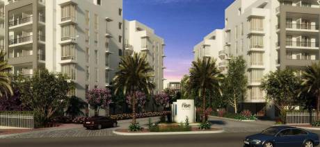 912 sqft, 2 bhk Apartment in Builder Project Mohali, Mohali at Rs. 36.4800 Lacs