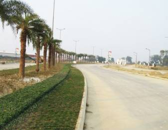 2691 sqft, Plot in DLF Garden City NH24B, Lucknow at Rs. 59.0000 Lacs
