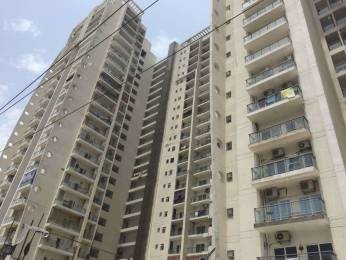 1412 sqft, 2 bhk Apartment in Apex The Florus Maharaja Agarsain Chowk, Ghaziabad at Rs. 77.0000 Lacs