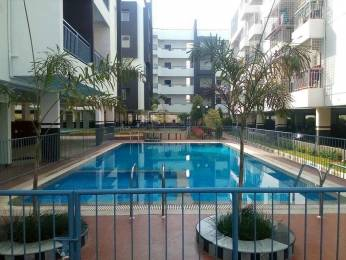 1445 sqft, 3 bhk Apartment in Infrany Petals Electronic City Phase 2, Bangalore at Rs. 62.3185 Lacs