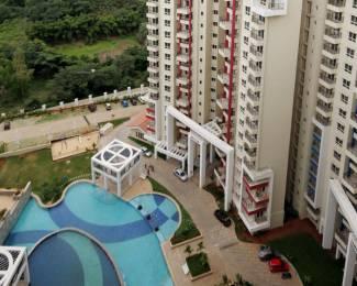 1655 sqft, 3 bhk Apartment in Purva Highland Anjanapura, Bangalore at Rs. 87.0000 Lacs