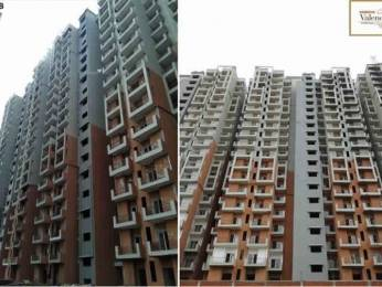 1140 sqft, 2 bhk Apartment in Builder Project Greater noida, Noida at Rs. 41.0000 Lacs