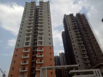 1670 sqft, 3 bhk Apartment in Hawelia Valenova Park Greater Noida West, Greater Noida at Rs. 65.0000 Lacs