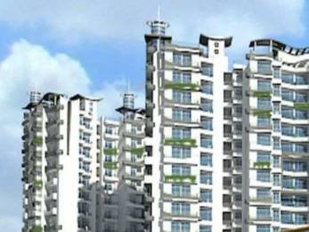 1010 sqft, 2 bhk Apartment in Builder Project Noida Extn, Noida at Rs. 8000