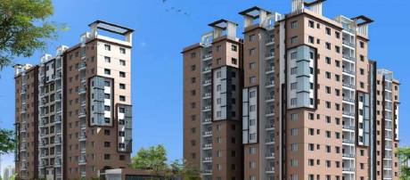 1450 sqft, 3 bhk Apartment in Builder SPRINGFIELD COMPLEX Kamalgazi Flyover, Kolkata at Rs. 63.8000 Lacs