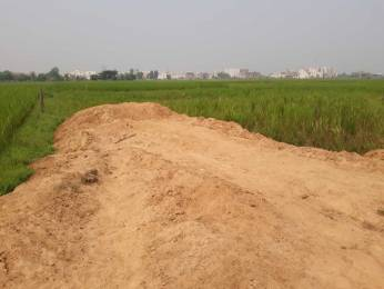 1200 sqft, Plot in Builder Bansi vihar Hansapal Road, Bhubaneswar at Rs. 17.0000 Lacs