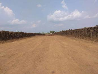800 sqft, Plot in Builder Dream Amaltas Kolar Road, Bhopal at Rs. 9.6000 Lacs