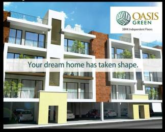 1368 sqft, 3 bhk Apartment in Builder oasis greens Patiala Highway, Zirakpur at Rs. 37.9100 Lacs