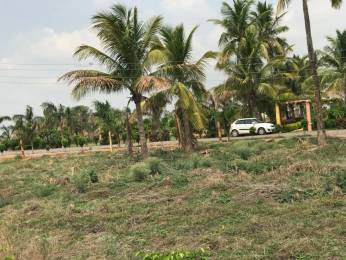 1200 sqft, Plot in Builder shagun residency Nardaha Road, Raipur at Rs. 10.2000 Lacs